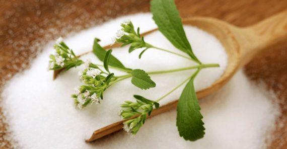 Stevia en Colombia